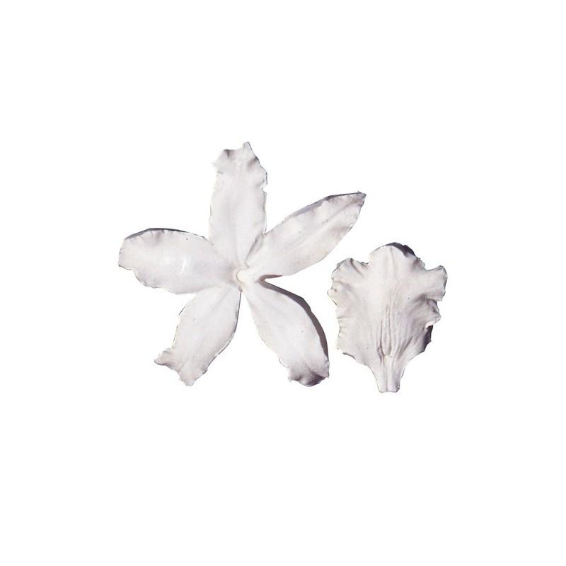 SK Great Impressions Petal Veiner Orchid odontoglossum - Squires Kitchen in vendita su Sugarmania.it