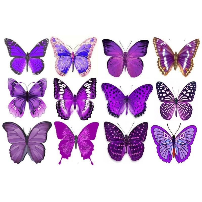 Farfalle grandi in wafer paper viola formato A4 - in vendita su Sugarmania.it