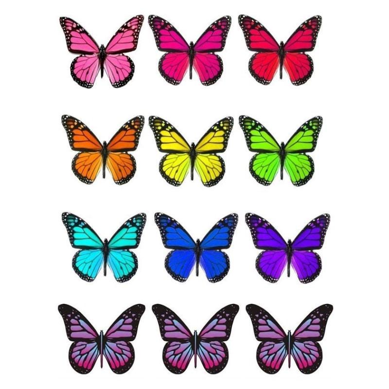 Farfalle grandi in wafer paper multicolore formato A4 - in vendita su Sugarmania.it