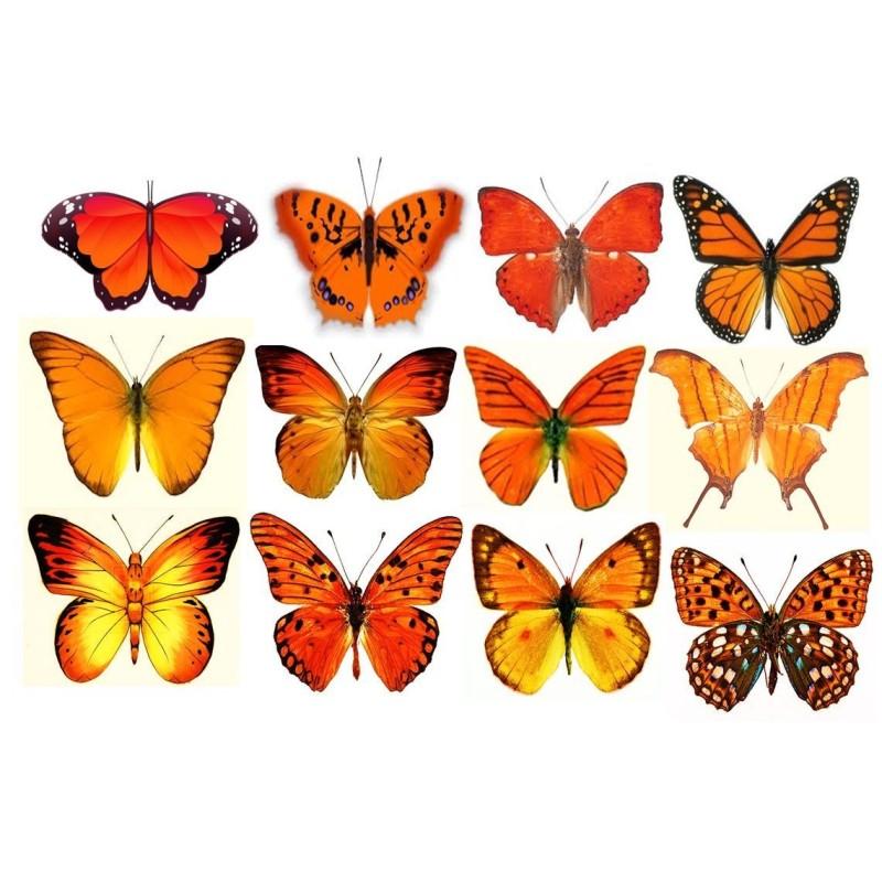 Farfalle in wafer paper gialle formato A4 -  in vendita su Sugarmania.it