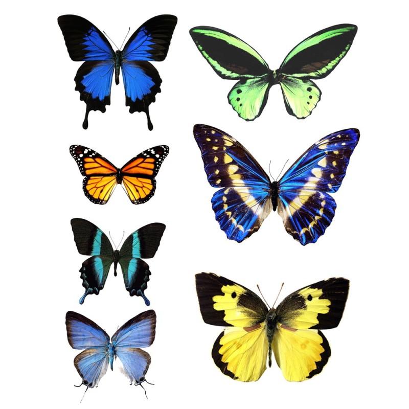 Farfalle grandi in wafer paper multicolore 1 formato A4 - in vendita su Sugarmania.it