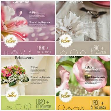 Collana 4 libri Decora , Fiori primavera,estate,autunno,inverno