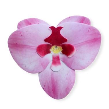 Orchidea rosa 10 pezzi fiore in cialda - Terezie Jirsova in vendita su Sugarmania.it